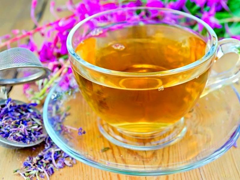 Иван чай беременным можно или нет