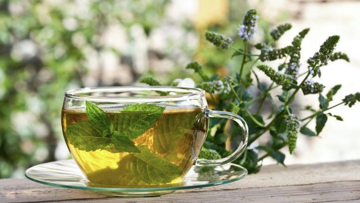 чай с мятой бодрит