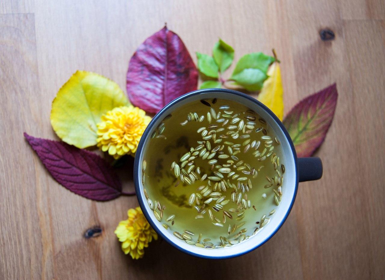 Чай с фенхелем для новорожденных сколько давать