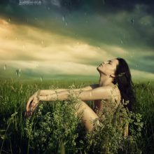 Гинекология: 16 трав и чаёв для лечения женщины